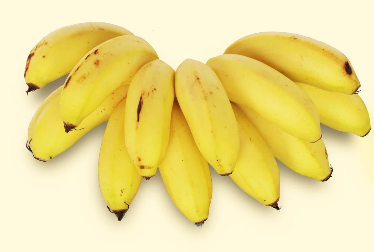 Foto de um cacho de Banana Maçã - Taubafrut
