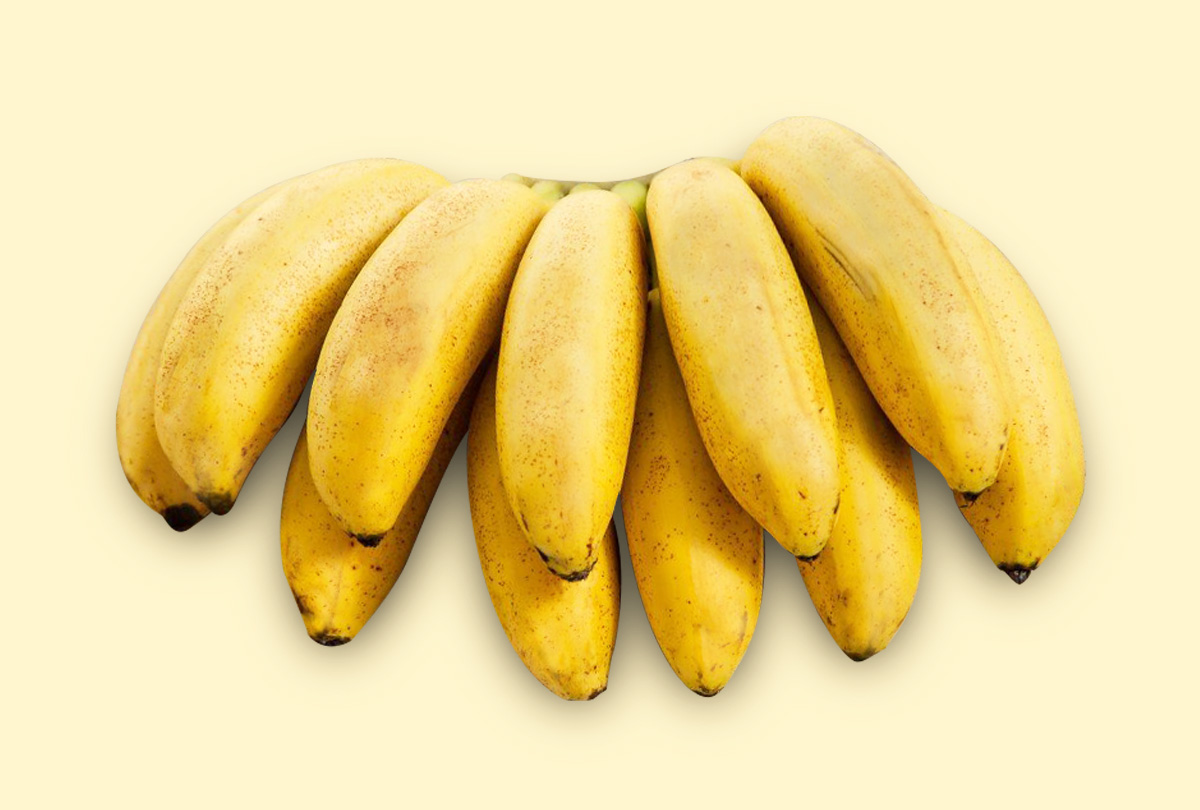 Banana Ouro - Taubafrut