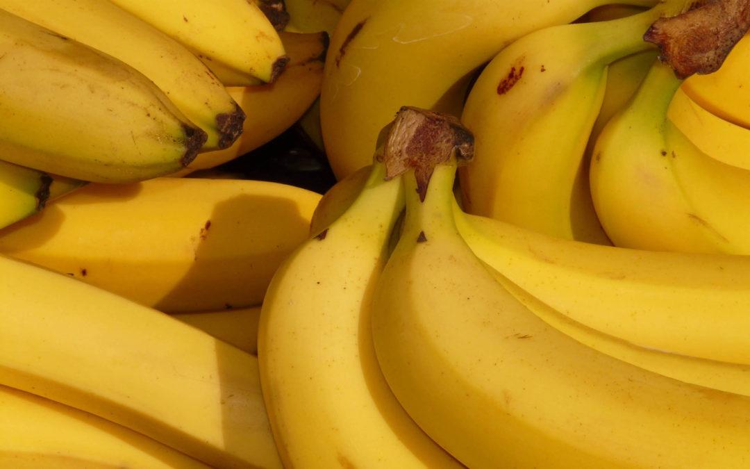 Bananas Climatizadas