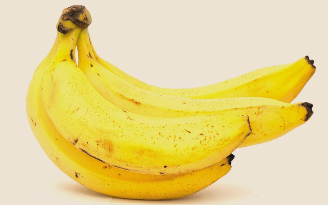 Banana-nanica, conheça os diferentes tipos de banana