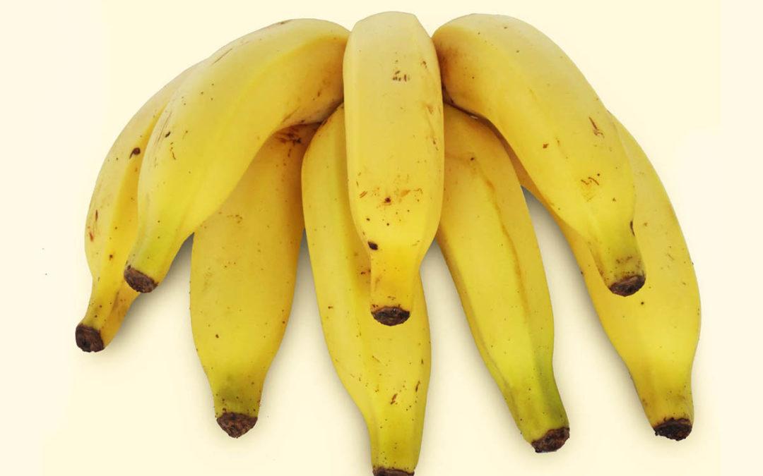 Banana-prata: conheça os diferentes tipos de banana
