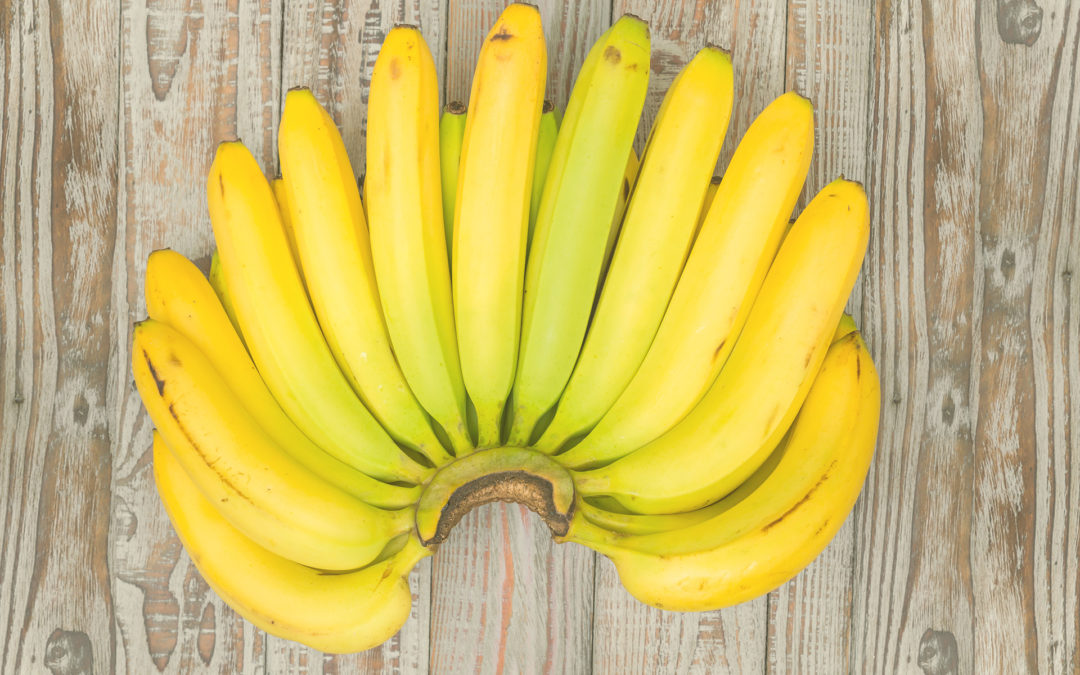 3 mitos sobre as nossas queridas bananas